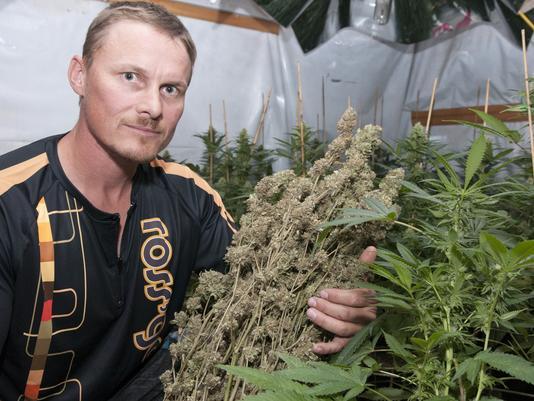 Ross Rebagliati – A Champion of Cannabis