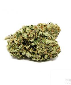 https://www.budderweeds.com/shop/cannabis-lube/ এর ছবির ফলাফল