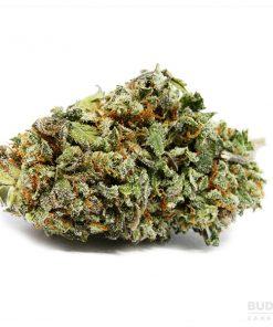 Indica, Sativa, buy weed online, weed, cannabis, shop online, marijuana, buy marijuana, CBD, THC