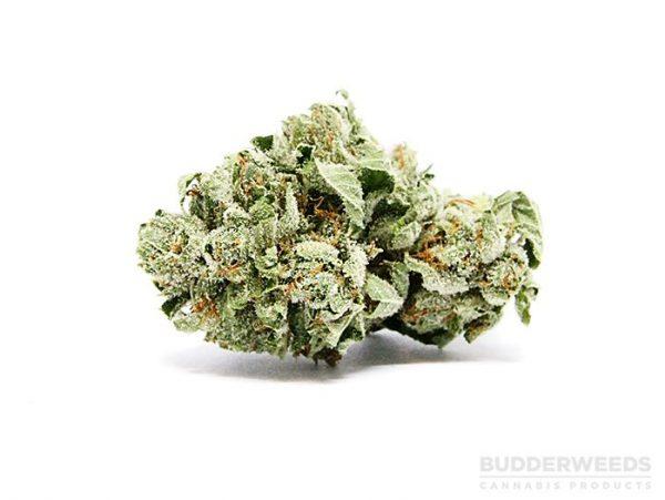 Hawaiian Cookies Marijuana Ounce Special