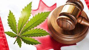 Historic Cannabis Legalization Bill C-45 Passes in Canadian Senate