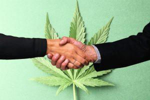 Cannabis Agreement