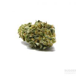 Sweet Durban Poison