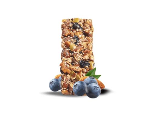Fruit & Nut Protein Bar