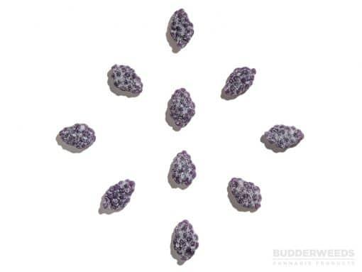 Sour Purple Vines