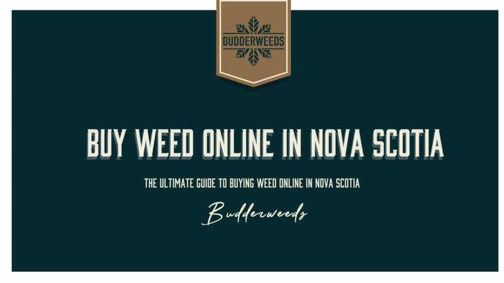 Buy Weed Nova Scotia