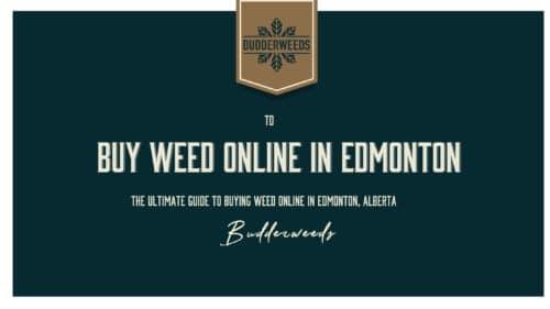 buy-weed-canada-ultimate-guide-Edmonton
