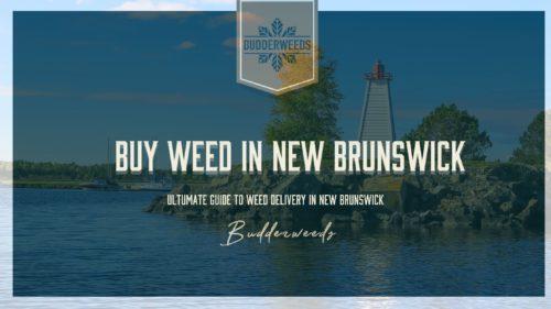new-brunswick-cannabis